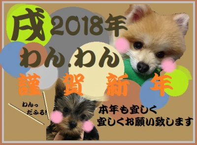 🐶新年あけましておめでとうございます🐶